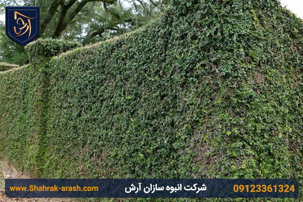 دیوار سبز برای تزئین ویلا
