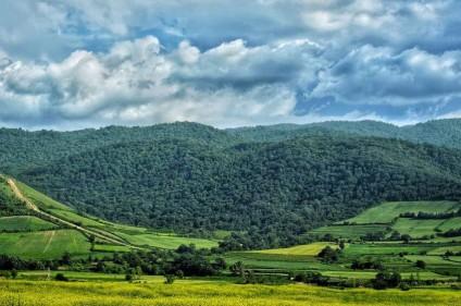 خرید زمین در مازندران با قیمت مناسب